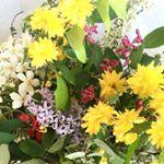 instagram de Oum-selmene - nabalsy.com